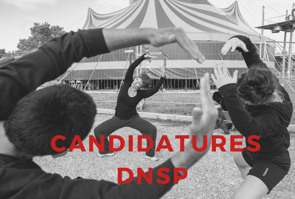 FIN DES CANDIDATURES DNSPac